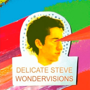 ../assets/images/covers/Delicate Steve.jpg